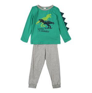 SCHIESSER Pyžamo  zelená