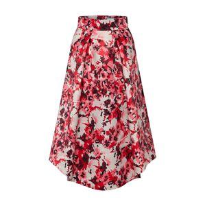 MAX&Co. Sukně 'PEGASO'  červená / bílá