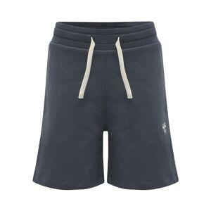 Hummel Sportovní kalhoty  tmavě modrá