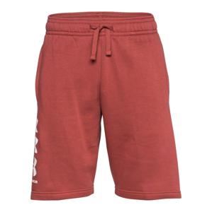 UNDER ARMOUR Sportovní kalhoty  červená / bílá