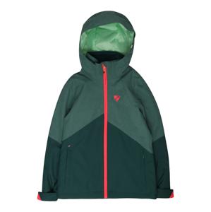 ZIENER Outdoorová bunda 'ALANI'  zelená