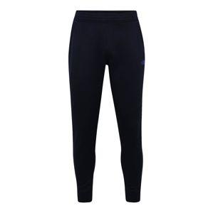THE NORTH FACE Sportovní kalhoty  tmavě modrá