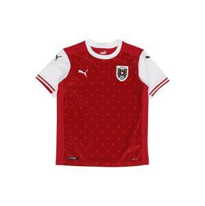 PUMA Funkční tričko  černá / červená / bílá