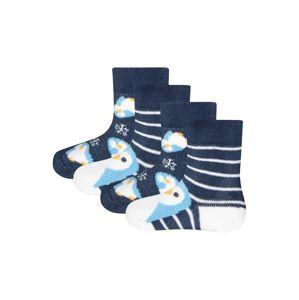 EWERS Ponožky  modrá / bílá / světlemodrá