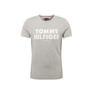 TOMMY HILFIGER Tričko  světle šedá / bílá