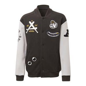 ADIDAS PERFORMANCE Sportovní bunda  černá / světle šedá