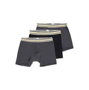 SCHIESSER Spodní prádlo  antracitová / tmavě šedá / tmavě modrá