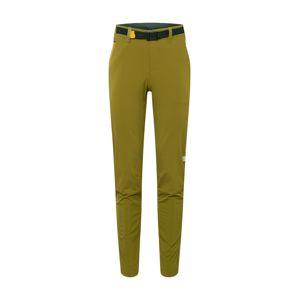 THE NORTH FACE Sportovní kalhoty  olivová