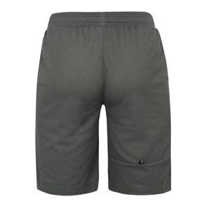 PUMA Sportovní kalhoty 'RTG Interlock Shorts 10`'  šedá