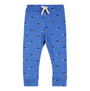 GAP Kalhoty  modrá / kobaltová modř / šedá / bílá