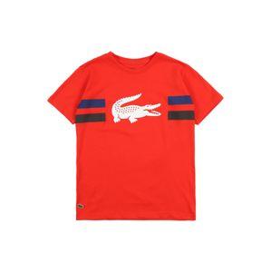 LACOSTE Shirt  červená / bílá