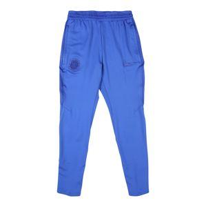 NIKE Sportovní kalhoty  modrá