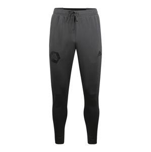 ADIDAS PERFORMANCE Sportovní kalhoty  tmavě šedá